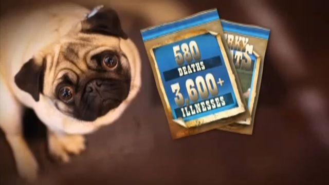 Fda Nearly 600 Dogs Die From Jerky Treats Made In China Kctv5