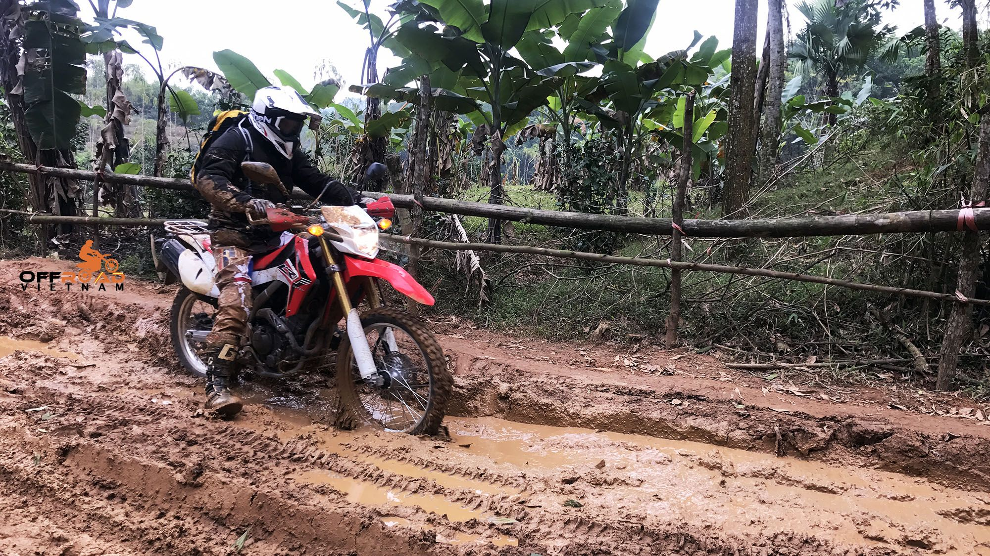 Pin On Photos Motorbike Tours Of Vietnam