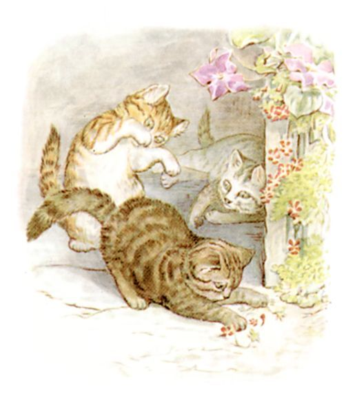 Once Upon A Time There Were Three Little Kittens And Their Names Were Mittens Tom Kitten And Moppet They Had Dear Little Fur Coa With Images Beatrix Potter Illustrations