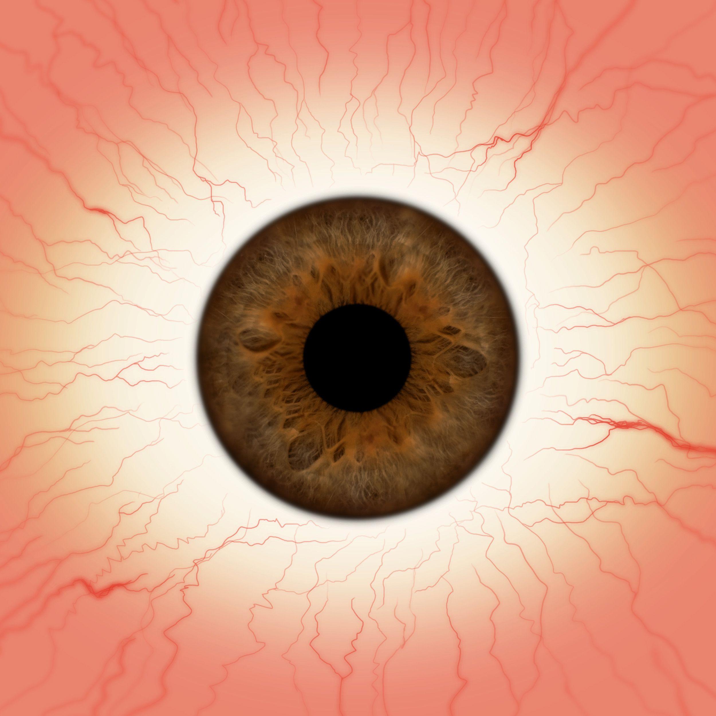 Pin by Sergey Kachnov on texture in 2018 | Pinterest | Eye, Anatomy ...