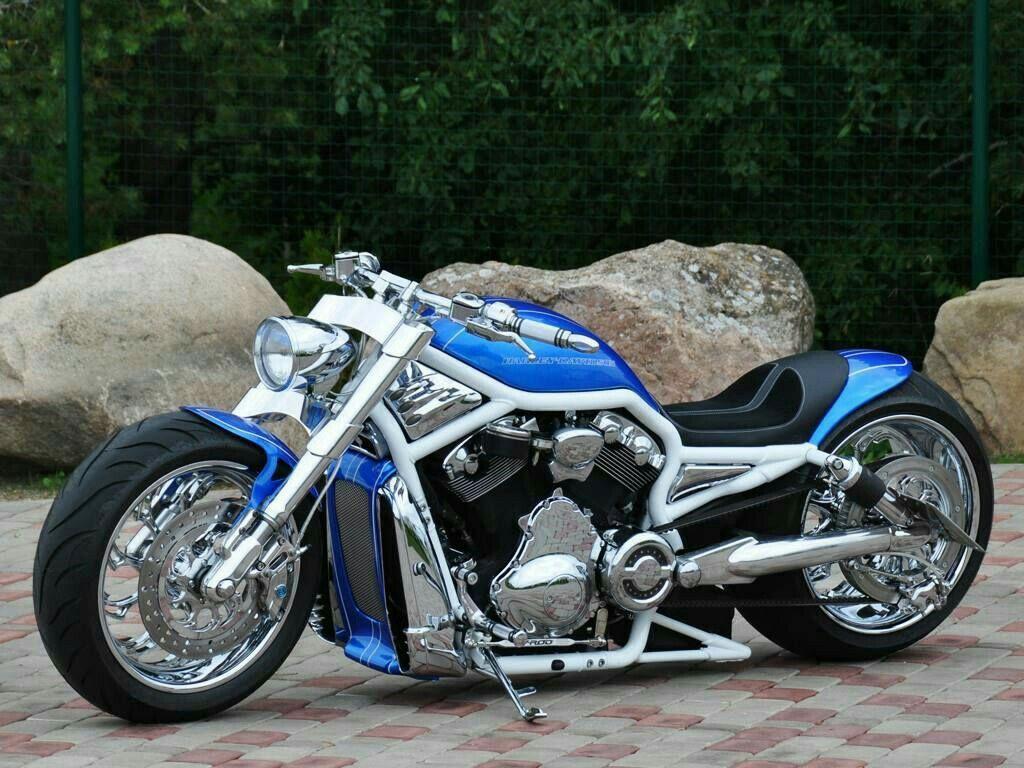 dream bike moto motorcycle harley davidson v rod et chopper bike. Black Bedroom Furniture Sets. Home Design Ideas