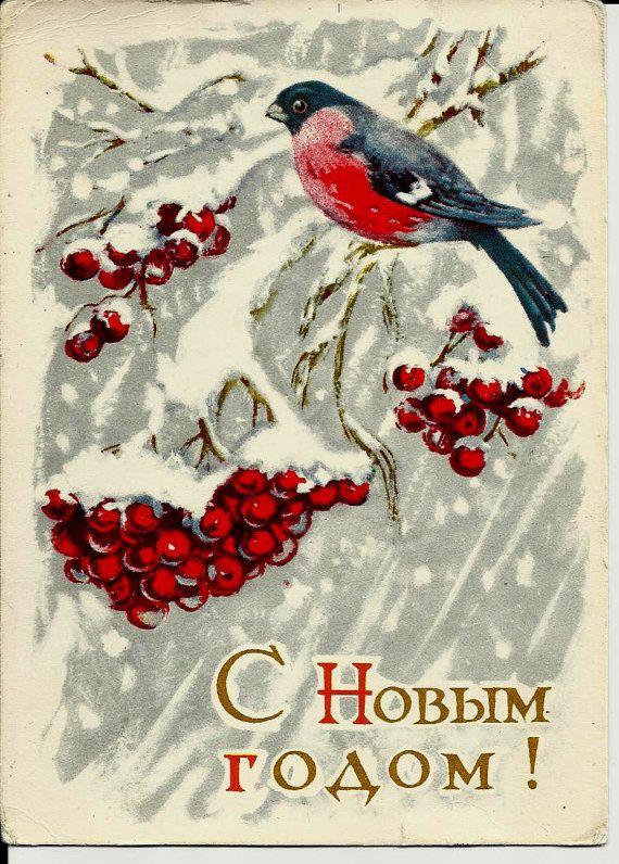 Bullfinch Rowanberry Vintage Russian Postcard print