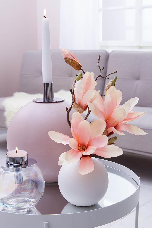 Große Magnolienliebe  💕