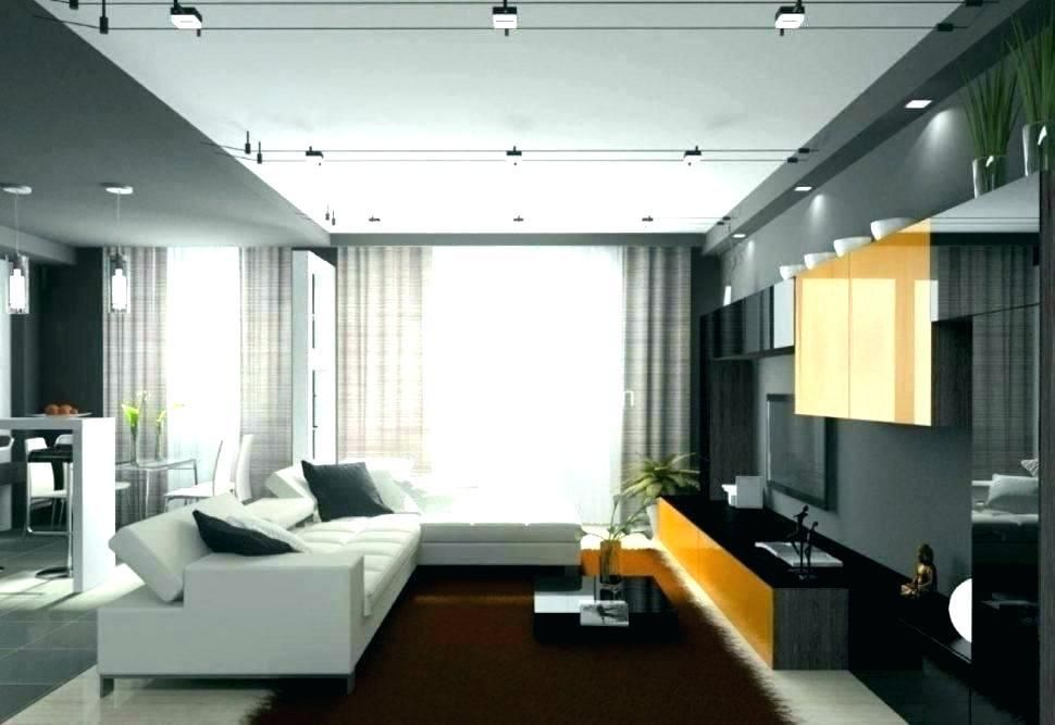 Contemporary Track Lighting Living Room Kitchen