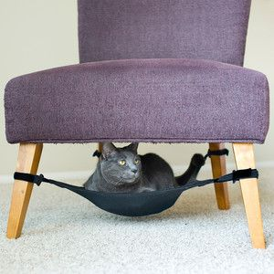 Cat Crib Black now featured on Fab.