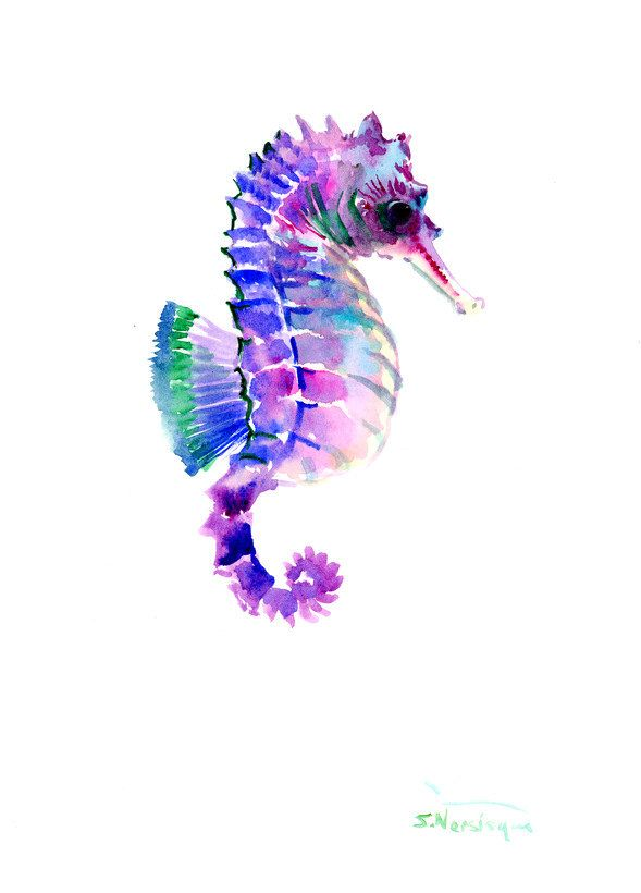 Purple Blue Seahorse Art One Of A Kind Original Watercolor