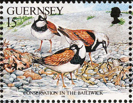 Ruddy Turnstone stamps - mainly images - gallery format