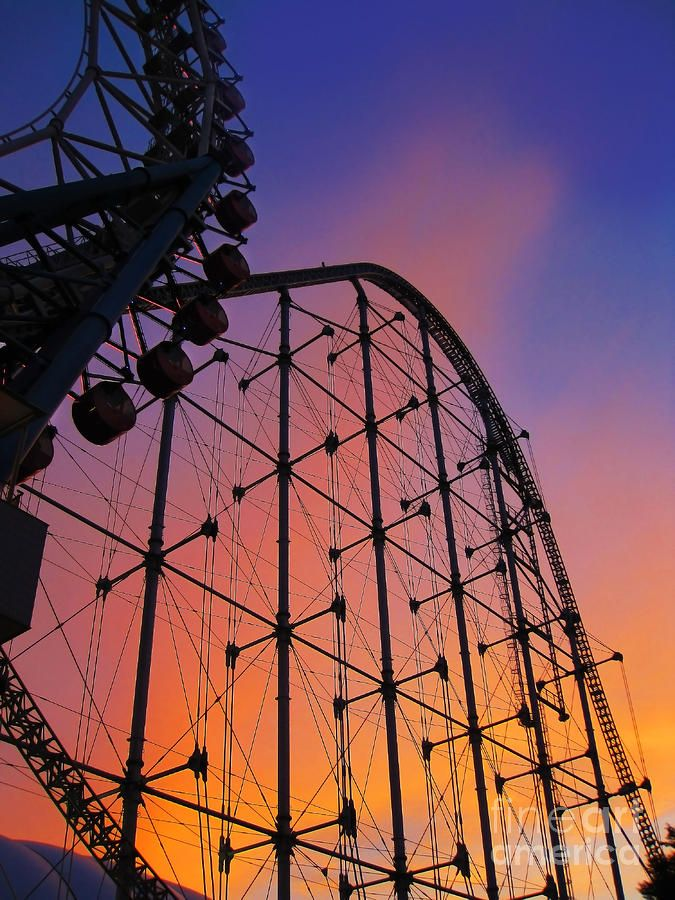 Roller Coaster At Sunset By Eena Bo Roller Coaster Amusement Park Rides Cool Pictures