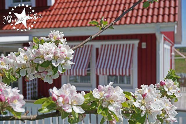 Schwedenhaus gartengestaltung  Kleine Lotta ~ Unser Schwedenhaus: !! Fenstermarkisen ...