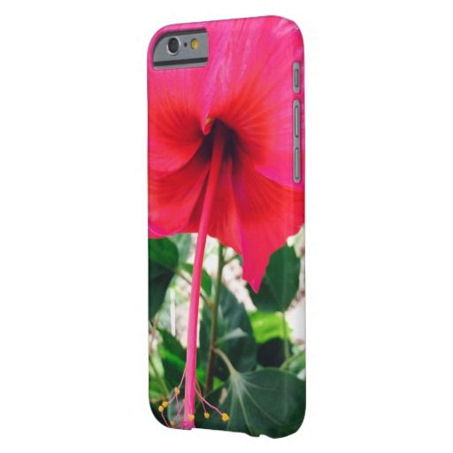 Hibiscus in Grenada Phone Case Barely There iPhone 6 Case