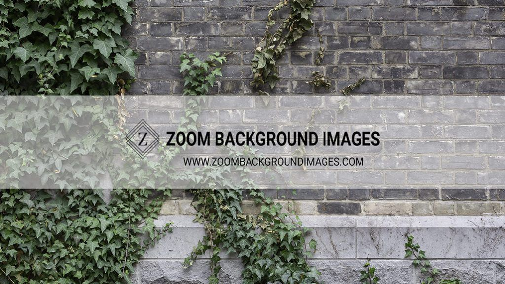 12 Awesome Zoom Virtual Backgrounds Background Images Background Digital Backgrounds