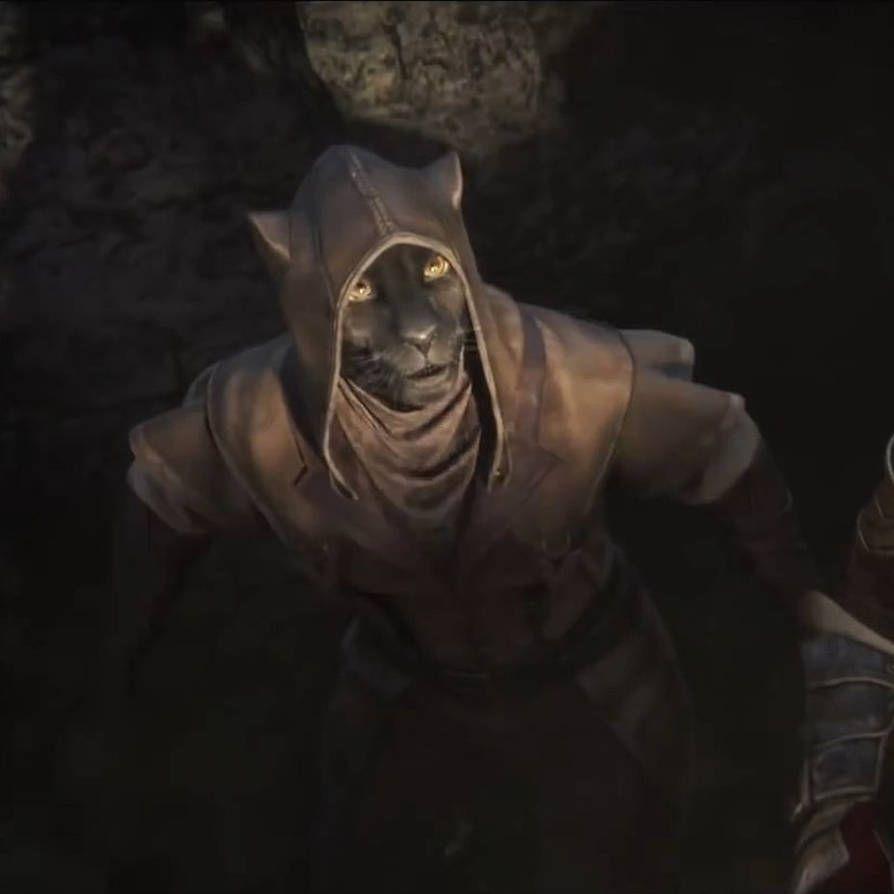 Eso Elsweyr Khajiit 2 By Https Www Deviantart Com Giuseppedirosso On Deviantart Skyrim Art Elder Scrolls Skyrim Elder Scrolls Games