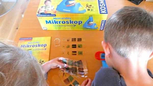 Kindergarten mikroskop kid experiments
