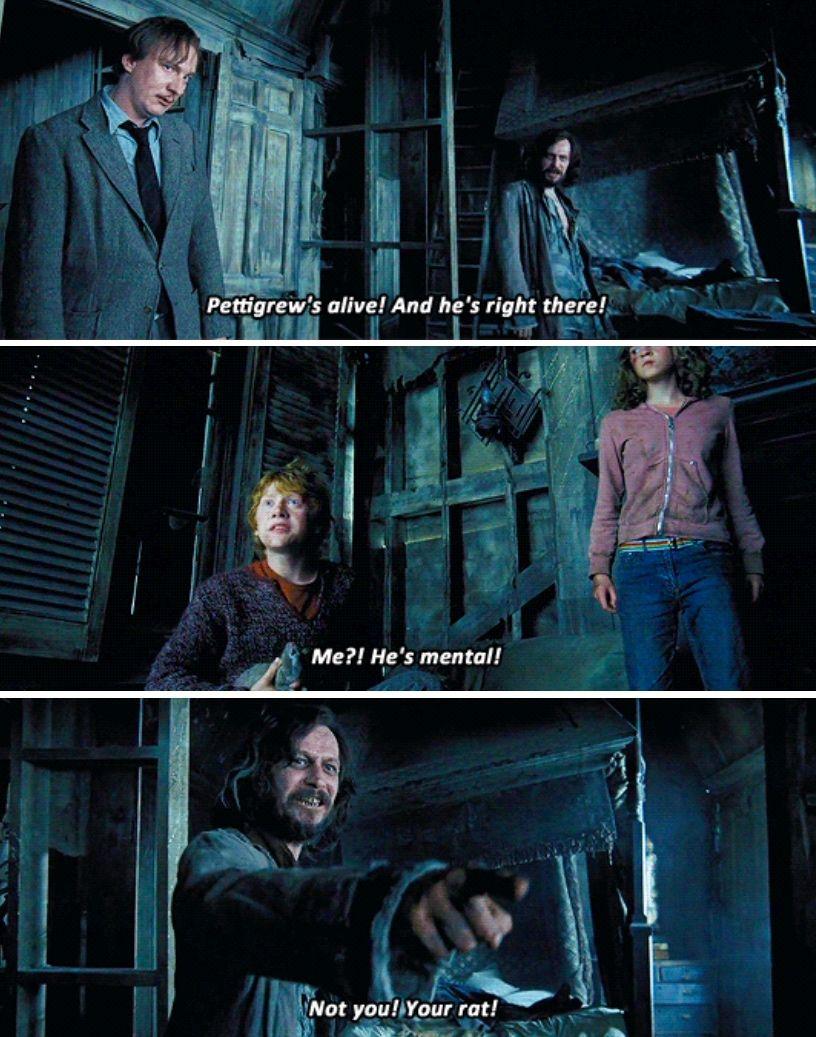 Uznik Azkabana Love Love Harry Potter Sirius Harry Potter Funny Harry Potter Parts