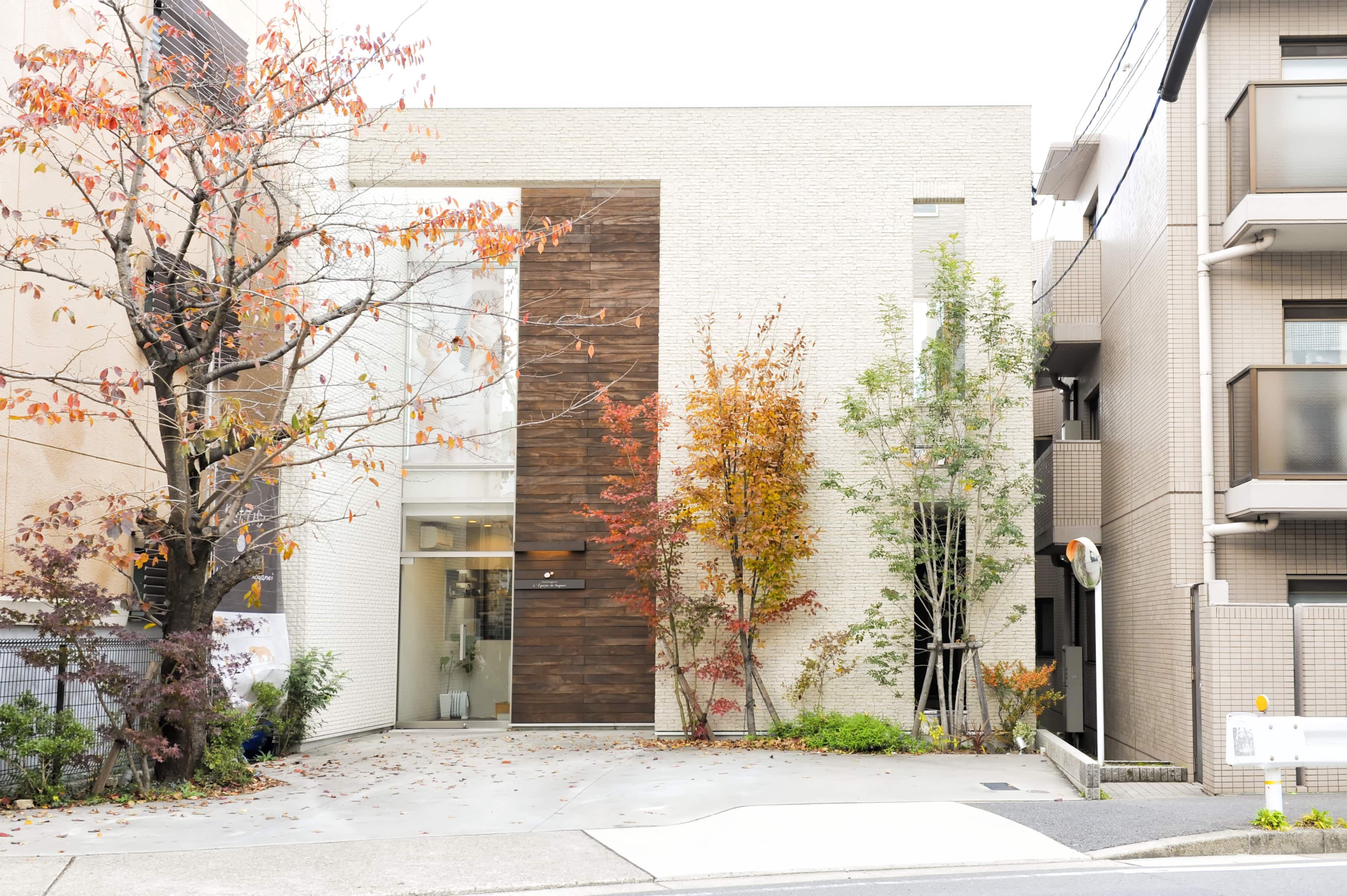 高級住宅街に建つおしゃれな住宅外観実例 大きな窓と天然木の外壁材が