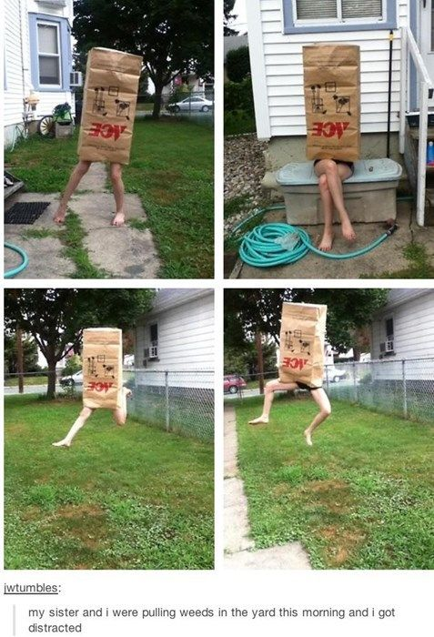 Yard Work Avoided Mission Successful Tumblr Funny Funny Pictures Laugh