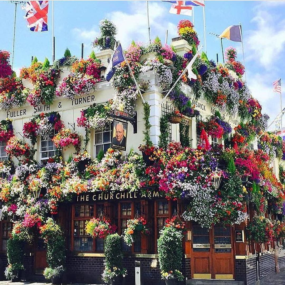 "178 tykkäystä, 5 kommenttia - YOGA REBEL® (@yogarebellondon) Instagramissa: "" London's prettiest pub #TheChurchillArms #london #londonsummer #lovelondon"""