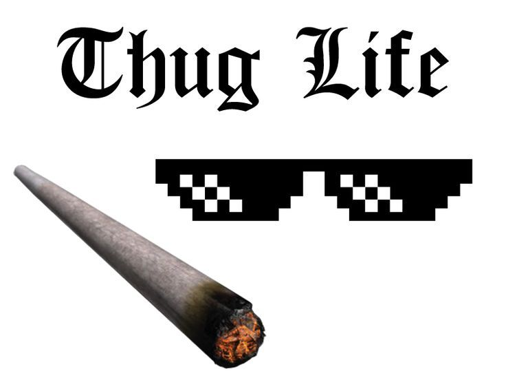 Everything You Need To Create Your Own Thug Life Meme Best Of Memes Thug Life Thug Life Wallpaper Thug Life Meme