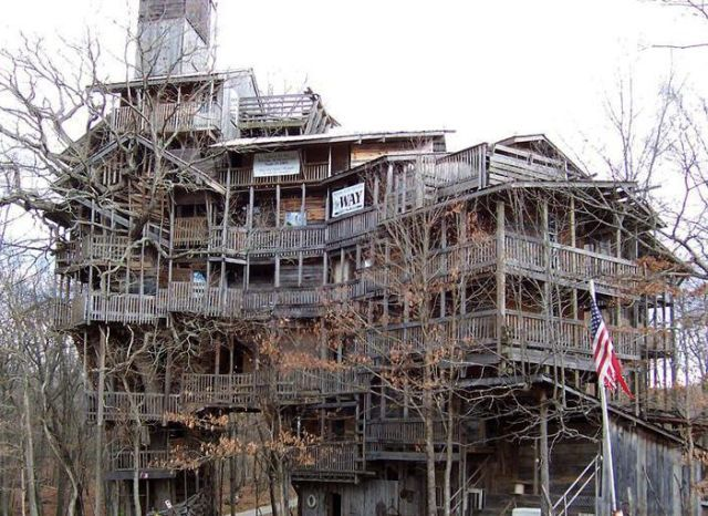World S Tallest Tree House Tree House Cool Tree Houses Building A Treehouse