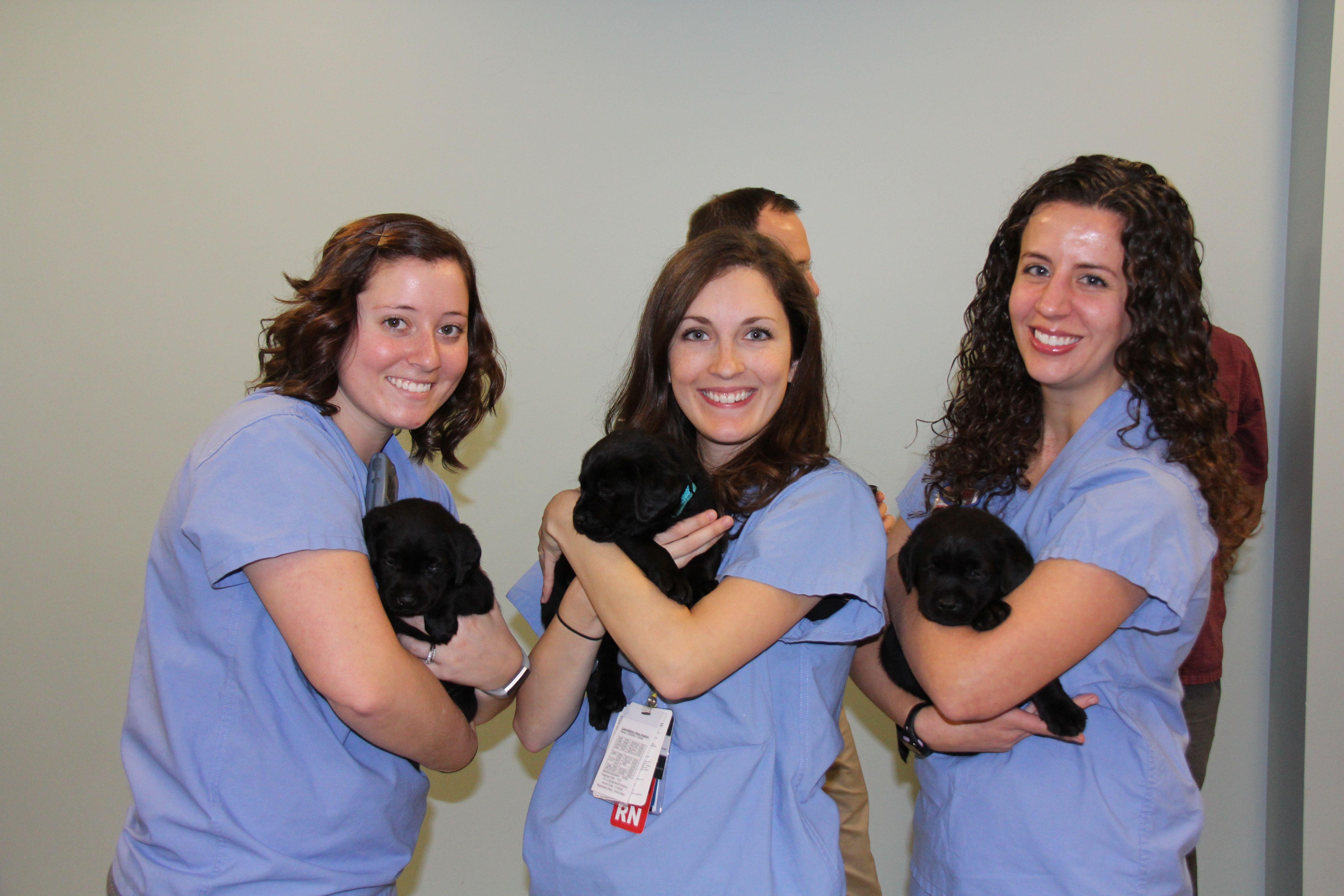 Eskenazi health employees pet a puppy day returns