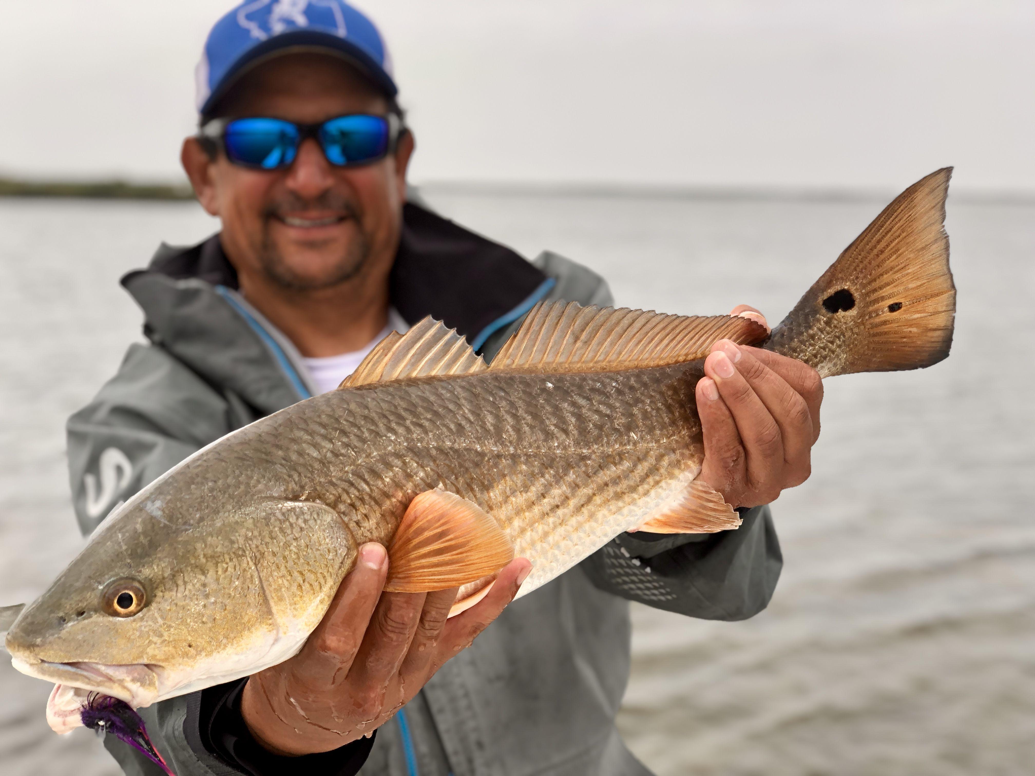 Winter Redfish Rockport Texas Saltwater Fishing Fly Fishing Rockport Texas