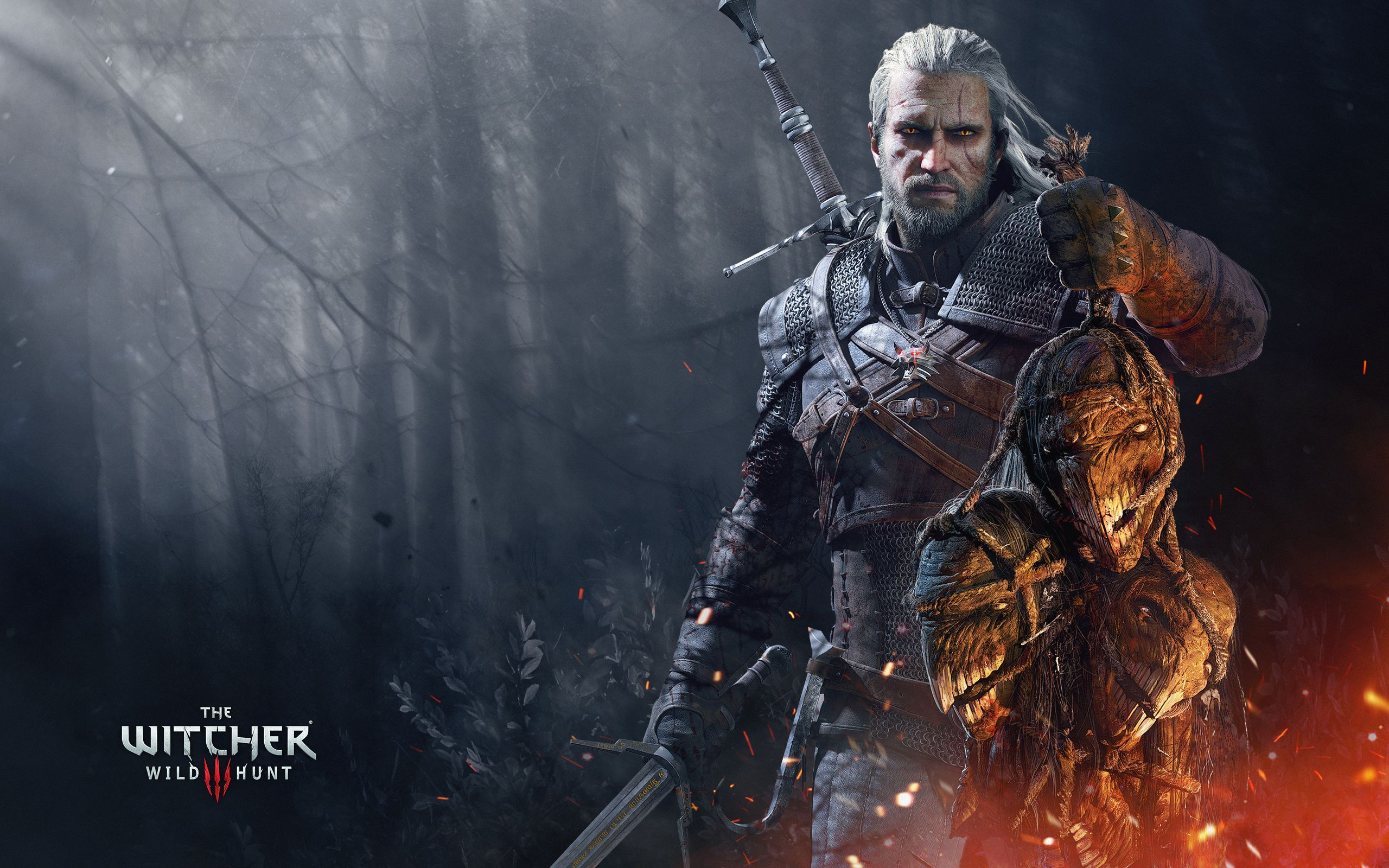 The Witcher 3 Wild Hunt Hd Wallpaper 2560x1600 With Images