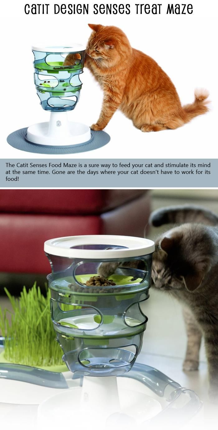 Top 10 Cat Accessories You Can Find On Amazon Cat Accessories Super Cat Cat Toys
