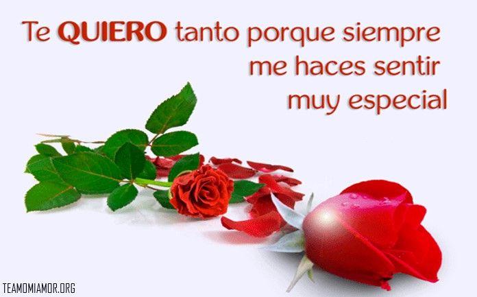 Imagenes De Amor Con Rosas Rojas