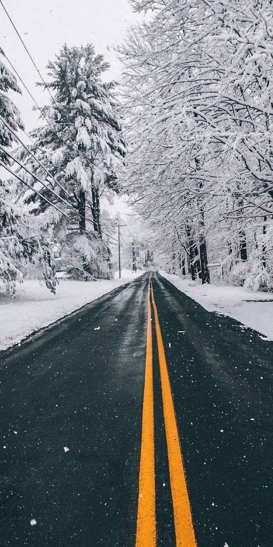 Photo of Hot Cider Hollow: Photo #winterwallpaper christmas-allyearro…