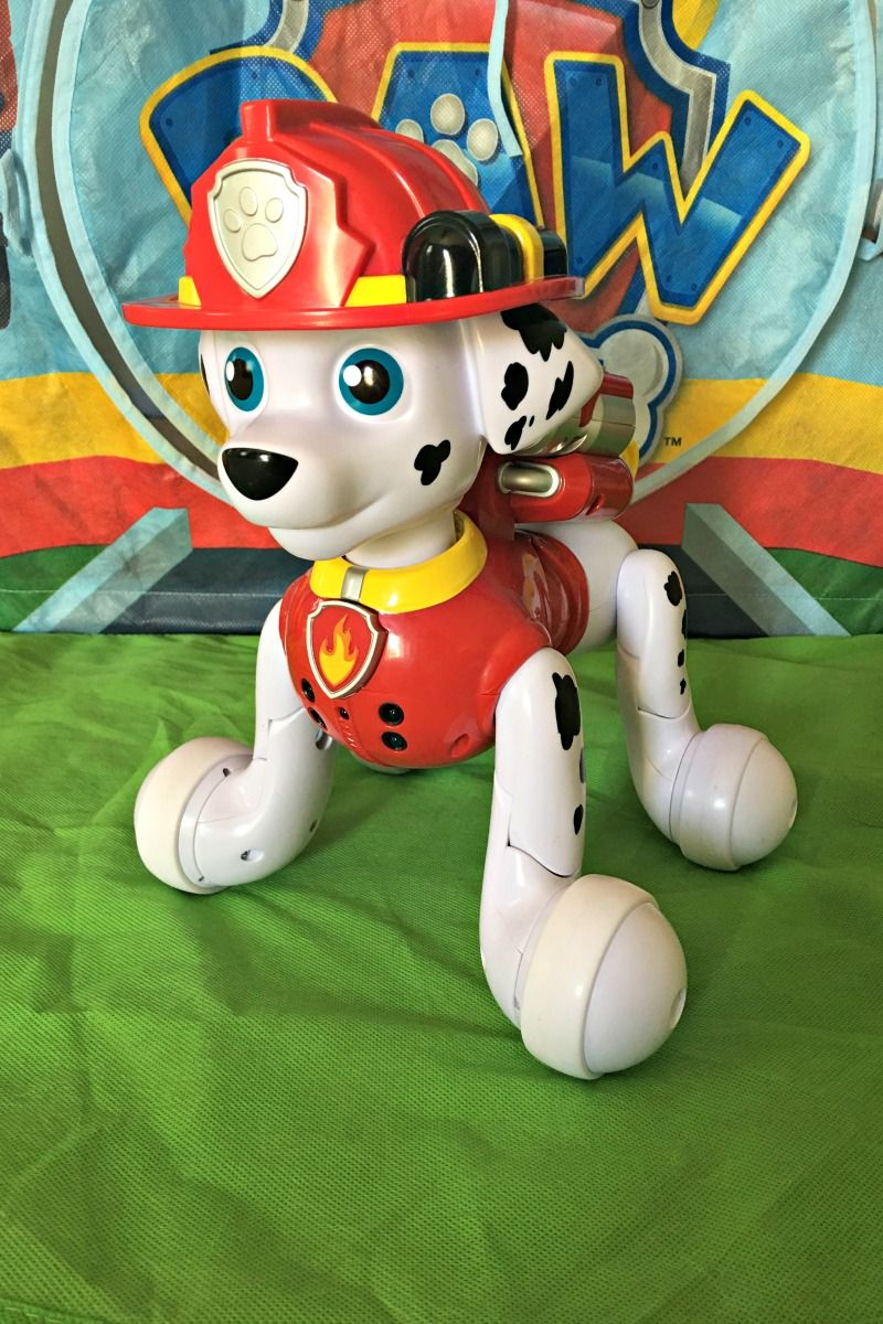 Paw Patrol Zoomer Marshall Is All Fired Up Find Out Why