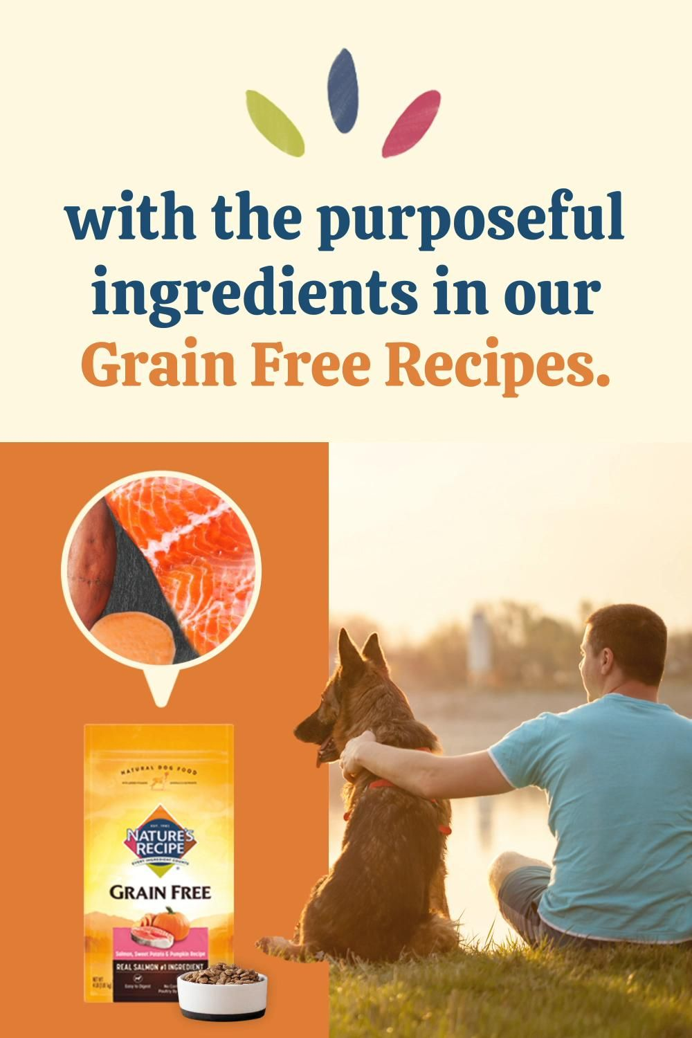 Nature S Recipe Uses Carefully Selected Ingredients To Support An Active Lifestyle For Your Dog Video In 2021 Salmon And Sweet Potato Natural Dog Food Your Dog