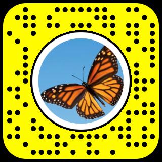 Snap To Unlock Snapchat Snapchat Filters Selfie Snapchat Filters Snapchat Filter Codes