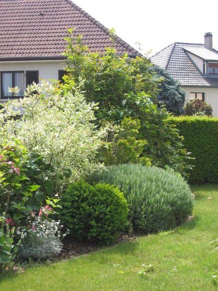 Massif d 39 arbustes pour haie basse idees jardin for Plante jardin moderne
