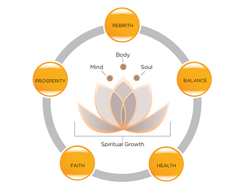 Learn Why We Chose The Lotus Flower To Symbolize Our Treatment