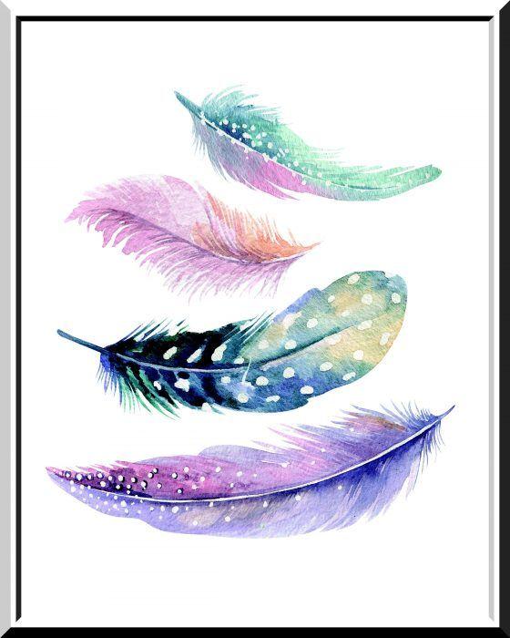 Wunderschone Federn Als Wandbild Bemalte Federn Federtapete Und