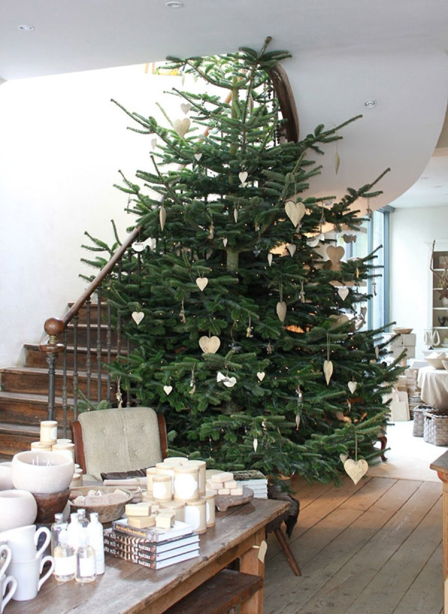 Newman Christmas Trees.Pin By Karen Newman On Random Natural Christmas Merry