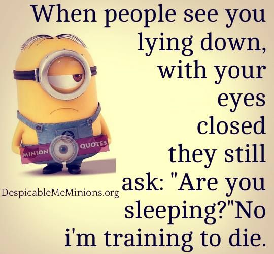 Are You Trying To Sleep Minion Stuff Cute Minions Minion Jokes Funny