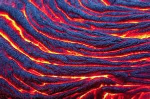textyres in nature - Ecosia