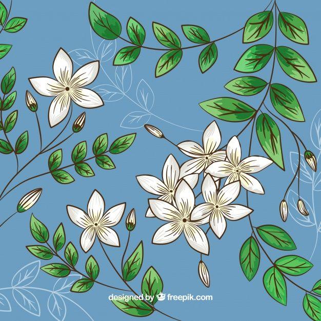 Fondo De Jazmines Y Hojas Dibujadas A Ma Free Vector Freepik Freevector Fondo Flor Floral Flores En 2020 Tatuaje De Jazmin Manos Dibujo Dibujos