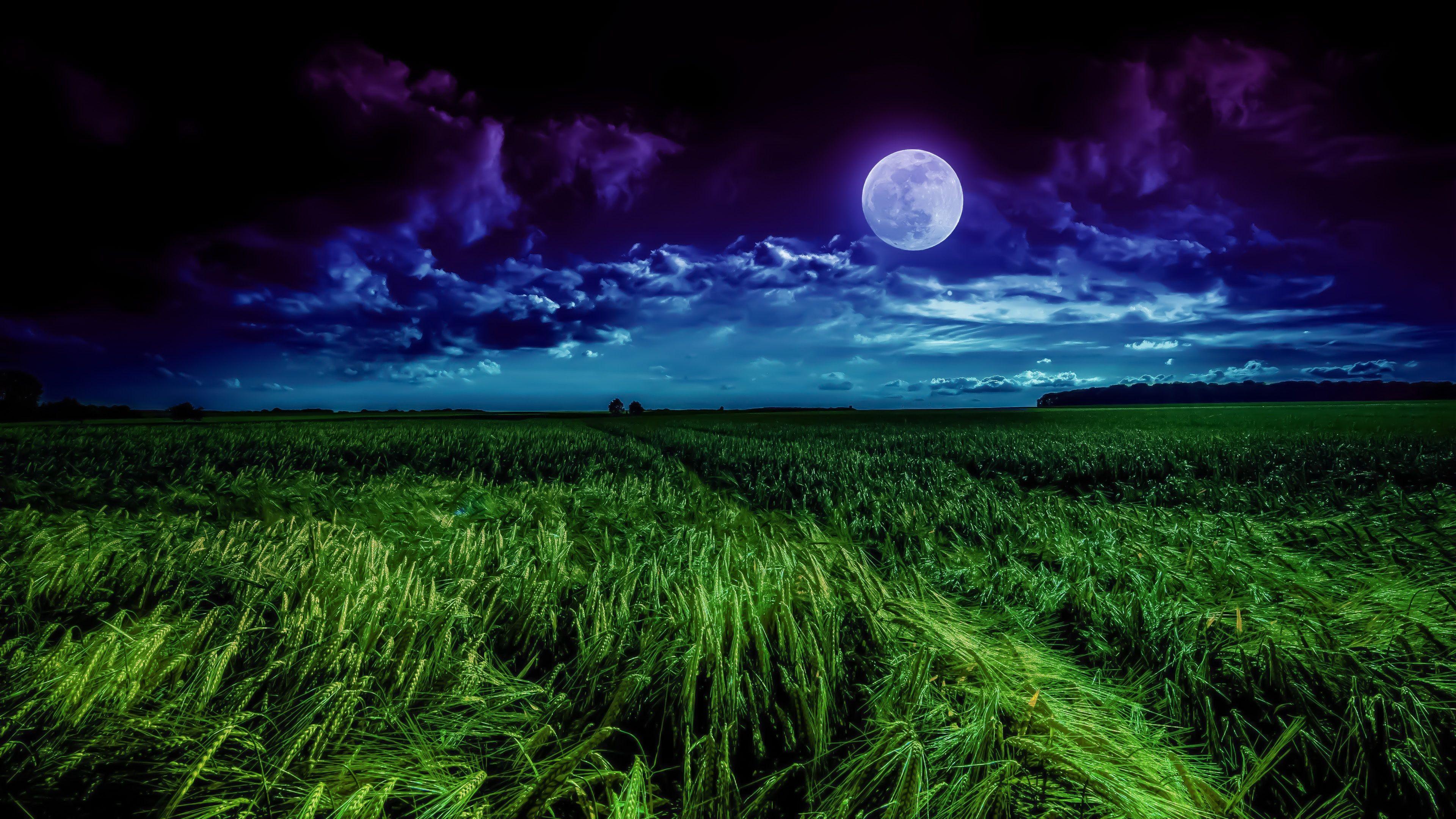 Grass Field Moon 4k Moon Landscape Landscape Photoshop Wallpapers