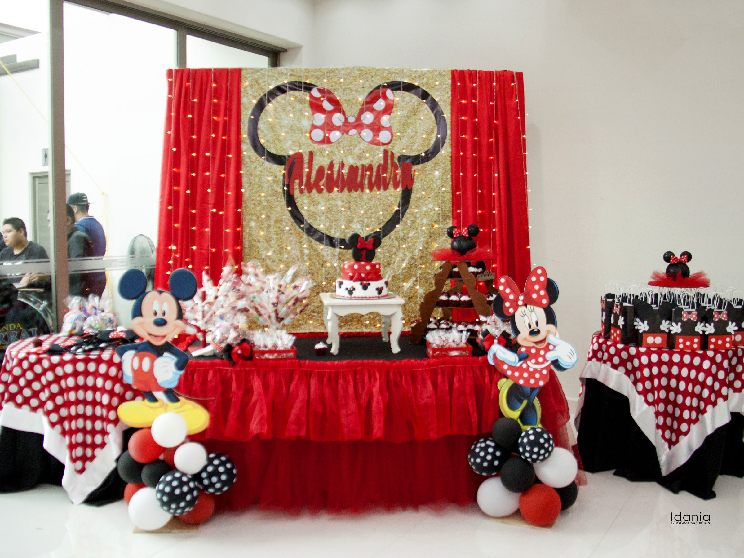 Background Minnie Mouse Party Minnie Mouse Party Mouse Parties Birthday