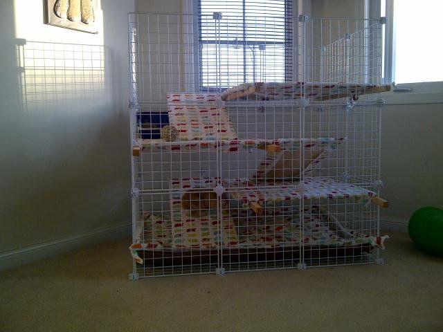 How To Build An Indoor Bunny Cage Via Http Bit Ly Epinner