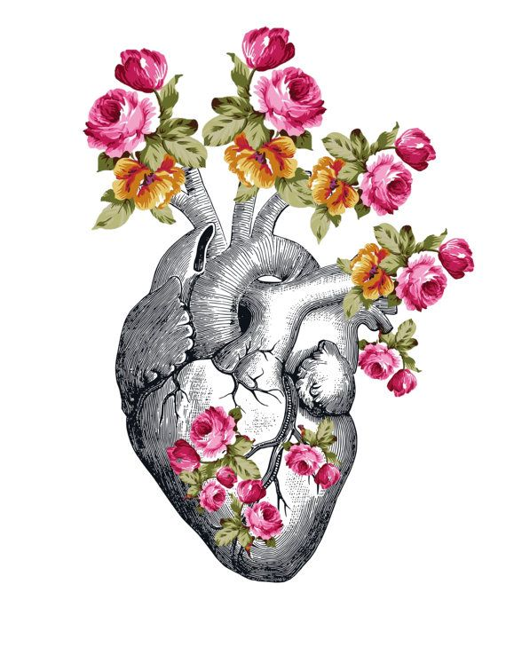 Anatomical Heart With Flowers Floral Heart Heart Art Print | Tattoos ...