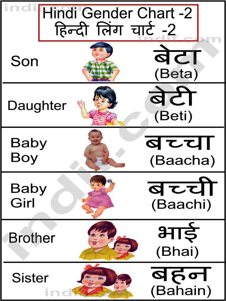 Hindi  Hindi Gender Chart