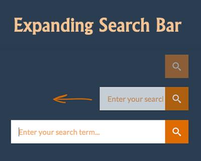 2c95d03fd25212c3159631eb79d5c790 - How To Get Search Bar On Top Of Screen