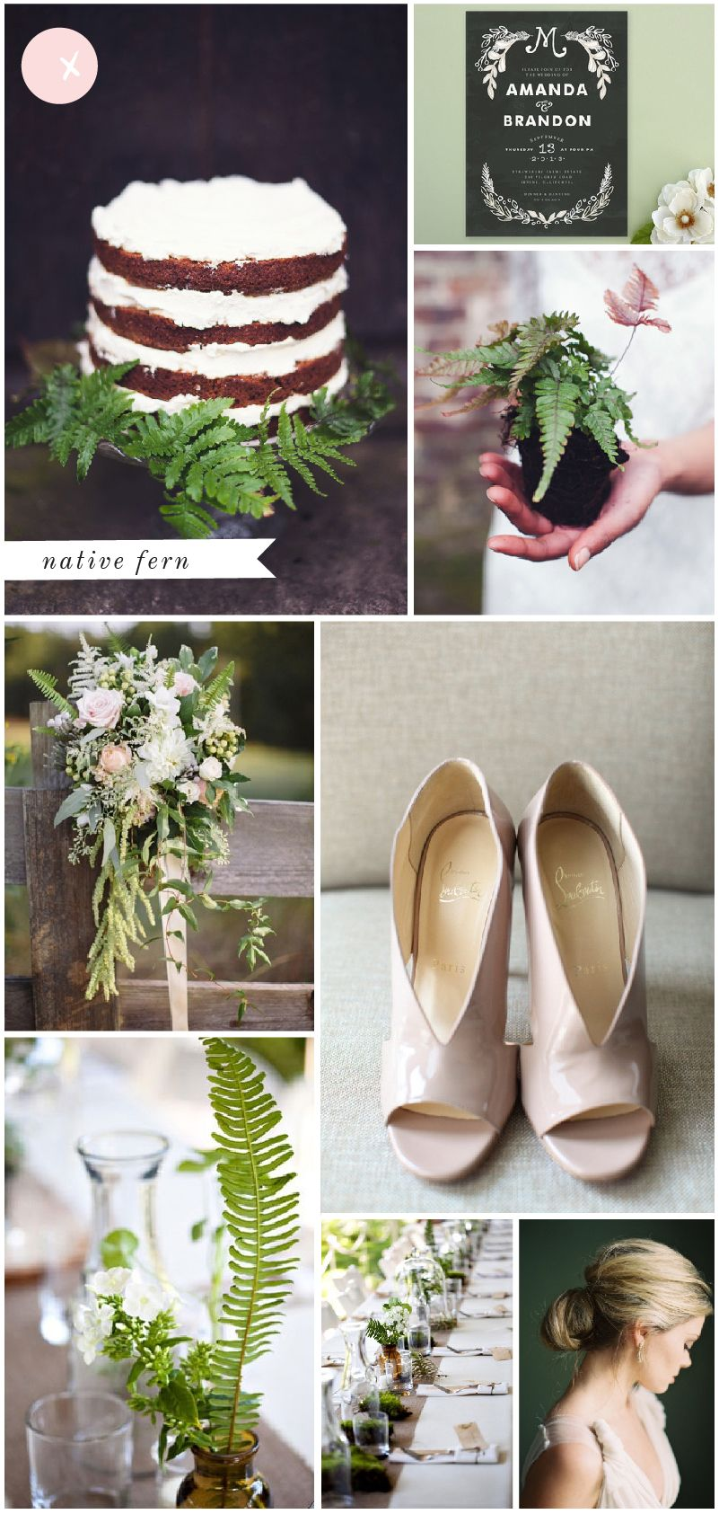 1000 Images About A Future Event Flowers Plants On Pinterest