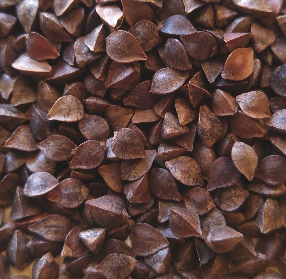 Details about organic raw whole buckwheat seeds for