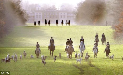 See a fox hunt in England