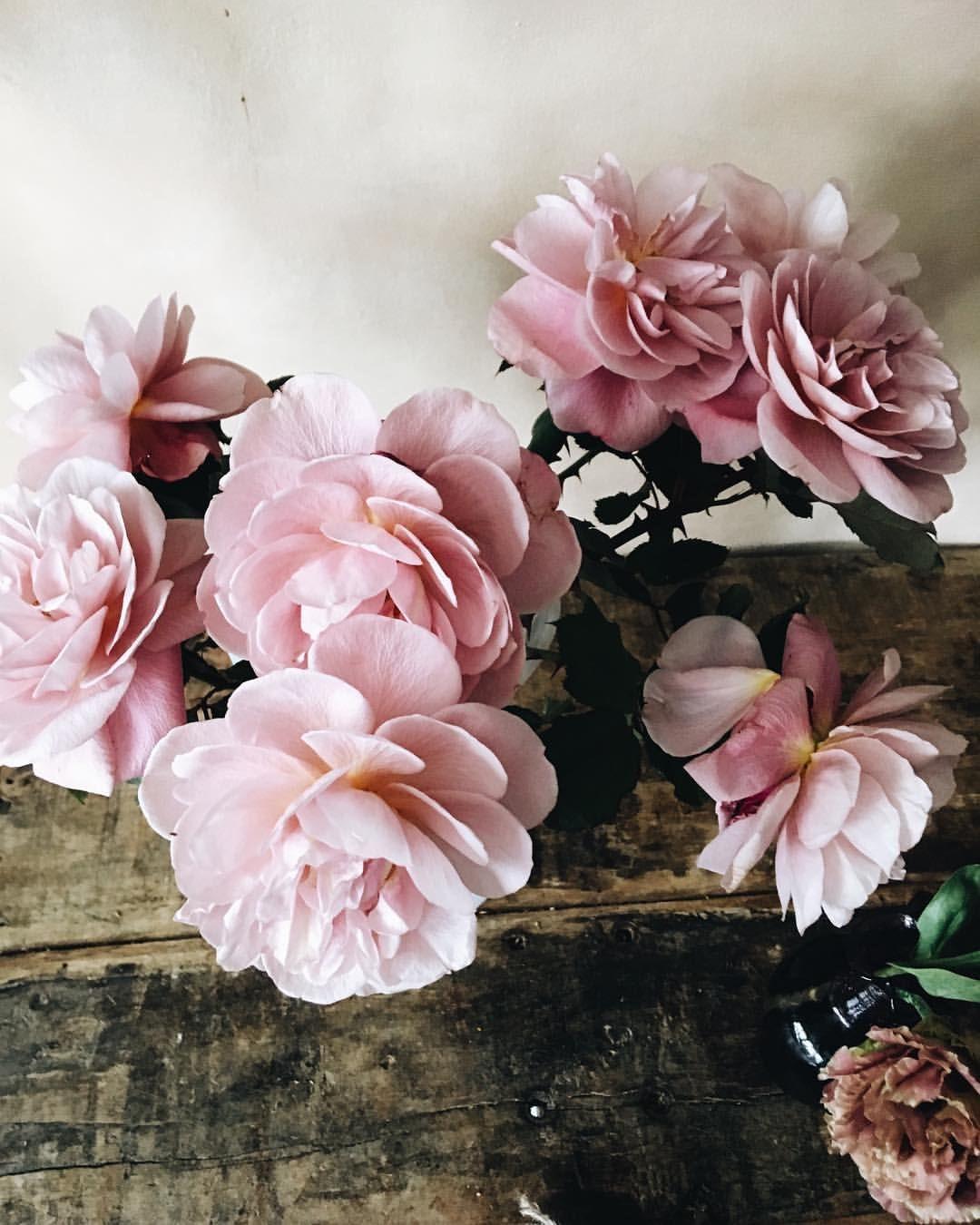 Quiet weekend mornings. Floral wedding, Floral wreath
