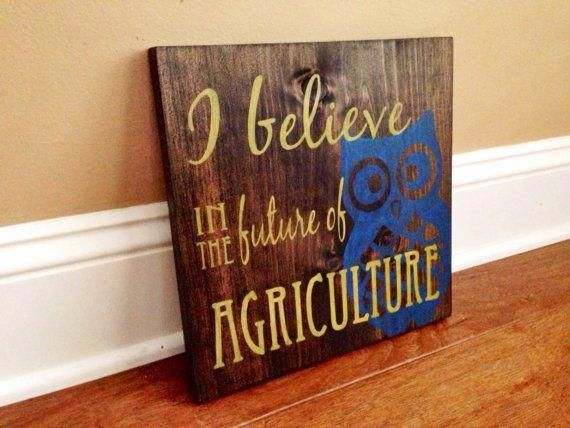 Painted  I Believe in the Future of Agriculture Sign  FFA | Etsy
